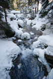 Winter Scene with Stream. A running stream in winter with snow covering the banks and the trees surrounding it Stock Photo