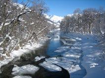 Winter scene in Switzerland royalty free stock photo