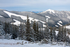 Winter scene in Tatra Mountains Stock Images