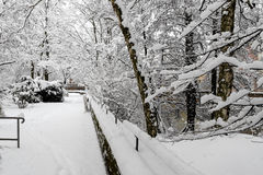 Winter scene -thickly snow covered park, river Pegnitz, Nuremberg, Germany Royalty Free Stock Images