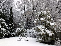 Winter scene. Winter time in Southern Ontario, Canada Stock Photography