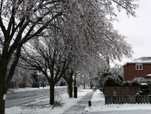 Winter scene. Winter time in Southern Ontario, Canada Royalty Free Stock Image