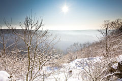 Winter scene, tree and distant. Sunny winter scene with tree and distant hills in landscape orientation royalty free stock images