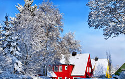 Winter scene with trees. And houses in several colors Royalty Free Stock Images
