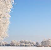 Winter scene under blue sky royalty free stock photos