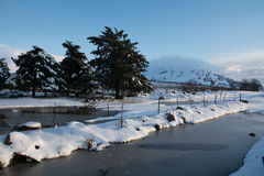 Winter scene with vineyards. Winter scene, snow, water creek and vineyards Stock Photo