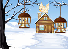 Winter scene with white owls in bird cages. Illustration royalty free illustration