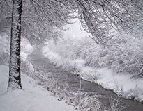 Winter scene. Ry with river and coldness royalty free stock image