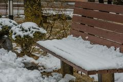 Winter scene of wooden park bench covered with snow next to snow. Covered bushes Stock Photos