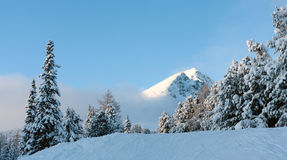 Winter scenein mountains Royalty Free Stock Images