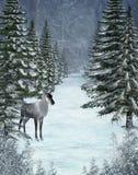 Winter scenery 14 Royalty Free Stock Image