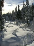 Winter scenery. House and trees at a ski resort - cypress mountain, site of 2010 olympics Stock Image