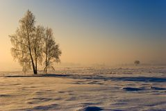 Winter scenery Stock Photos