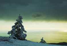 Free Winter Scenery Stock Photo - 1778250