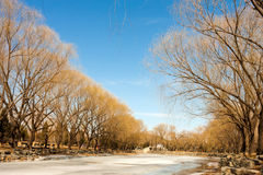Winter scenery. Western shore of Kunming Lake in Summer Palace,Beijng,China Stock Image