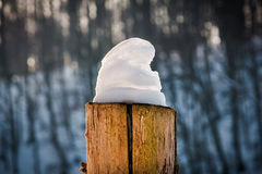 Winter scenery. Of wooden pole covered with snow forming nice snowy hat, and blurred forest in background Royalty Free Stock Images