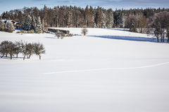 Winter scenery Royalty Free Stock Image