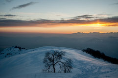 Winter scenery. In sunset light Royalty Free Stock Photos