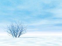 Free Winter Scenery Royalty Free Stock Photos - 3967538