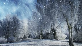 Winter scenery and falling snow stock illustration