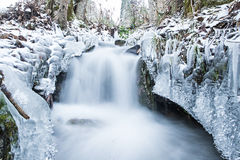 Winter scenery featuring a running creek of water. Water running through creek surrounded by winter ice crystals Royalty Free Stock Photography