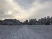 Winter scenery. Field in winter Stock Image
