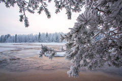 Winter scenery from Finnish nature Royalty Free Stock Image