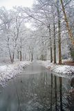 Winter scenery in the forest in Netherlands. Winter scenery in the forest in the Netherlands Stock Photo