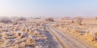 Winter scenery, with frost covered vegetation on a cold, sunny, day Stock Image
