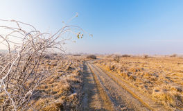Winter scenery, with frost covered vegetation on a cold, sunny, day Stock Photography