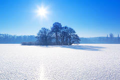 Winter scenery of frozen lake Stock Image
