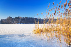 Winter scenery of frozen lake Stock Photography