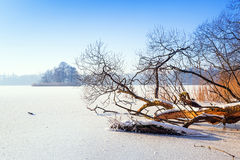 Winter scenery of frozen lake Royalty Free Stock Photo