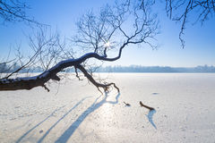 Winter scenery of frozen lake Royalty Free Stock Images