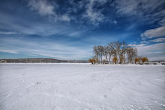 Winter scenery of frozen lake in city park Royalty Free Stock Photo