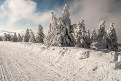 Winter scenery with frozen small trees, snow covered road and blue sky with clouds. Bellow Praded hill in Jeseniky mountains in Czech republic royalty free stock images