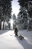 Winter scenery, girl with sleigh from behind. Girl is walking towards forest edge to go sledding Stock Photo