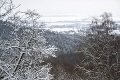 Winter scenery in Hohenlohe Stock Photo