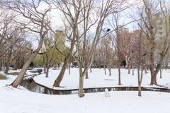 Winter scenery of the Hokkaido University Stock Photos
