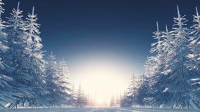 Winter scenery stock footage