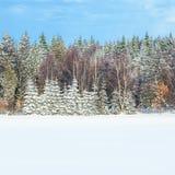 Winter scenery Stock Photo