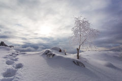 Free Winter Scenery In The Mountains Stock Photography - 61100592
