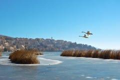 Winter scenery in lake Orestiada in Kastoria, Greece Royalty Free Stock Image