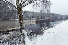 Winter scenery at Morrum river. In south Sweden Royalty Free Stock Photography