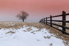 Winter scenery in the mountains Stock Photography