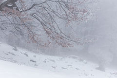 Winter scenery in the mountains Stock Photo
