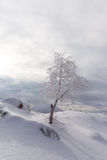 Winter scenery in the mountains Royalty Free Stock Photography