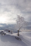 Winter scenery in the mountains Royalty Free Stock Image