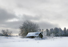 Winter scenery royalty free stock photo
