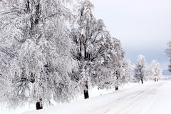 Winter scenery. One sunny winter day on the road Royalty Free Stock Photography